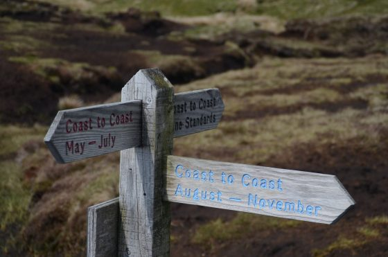Wooden Coast to Coast sign, with different coloured text, at Nine Standards