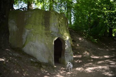 Daisy the dog outside the entrance to the Hermitage in Little Beck Wood