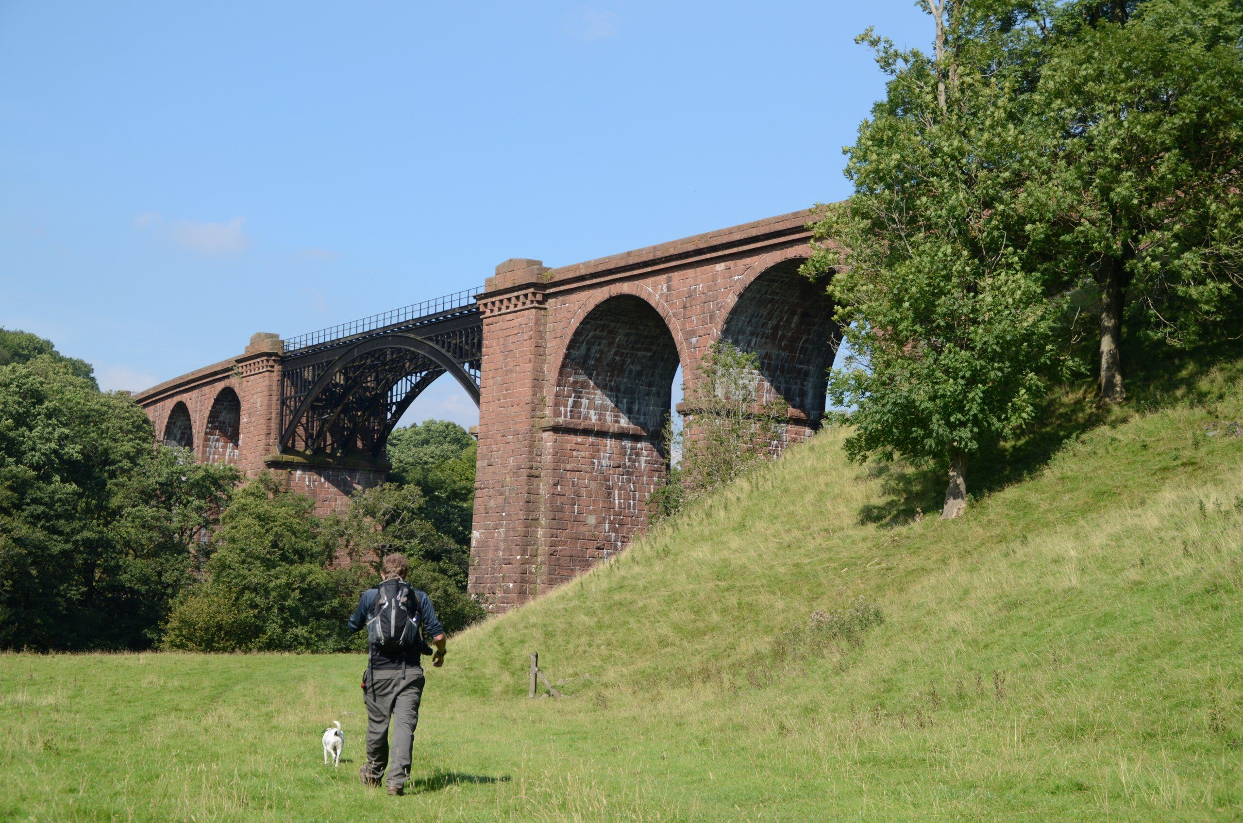 Trekker and Daisy by Lune Viaduct