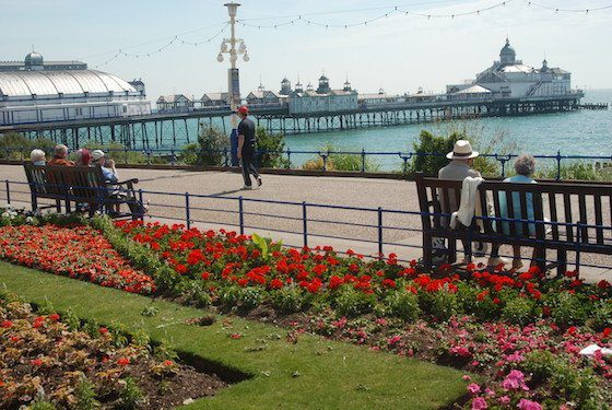 Eastbourne seafront, with people on benches with their backs to the flowerbeds and the pier in the background