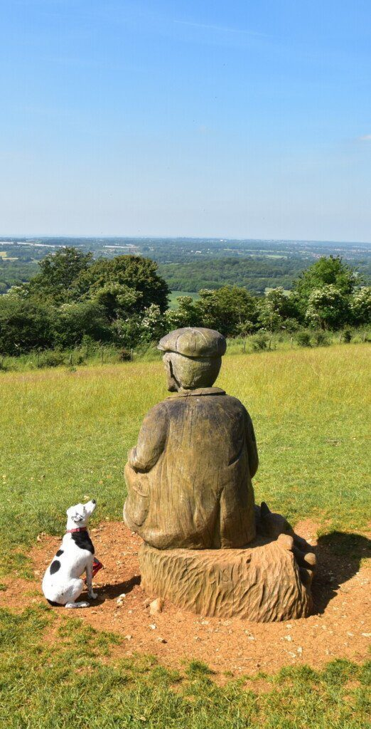 Daisy on the North Downs Way by the Shepherd Sculpture, a seated, cloth-capped wooden figure overlooking the landscape