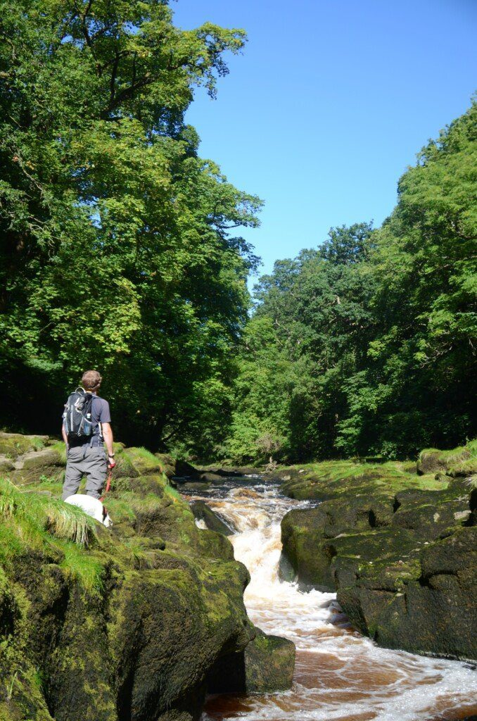 Hiker and Daisy the dog stand by rushing water known as the Strid, on the Dales Way