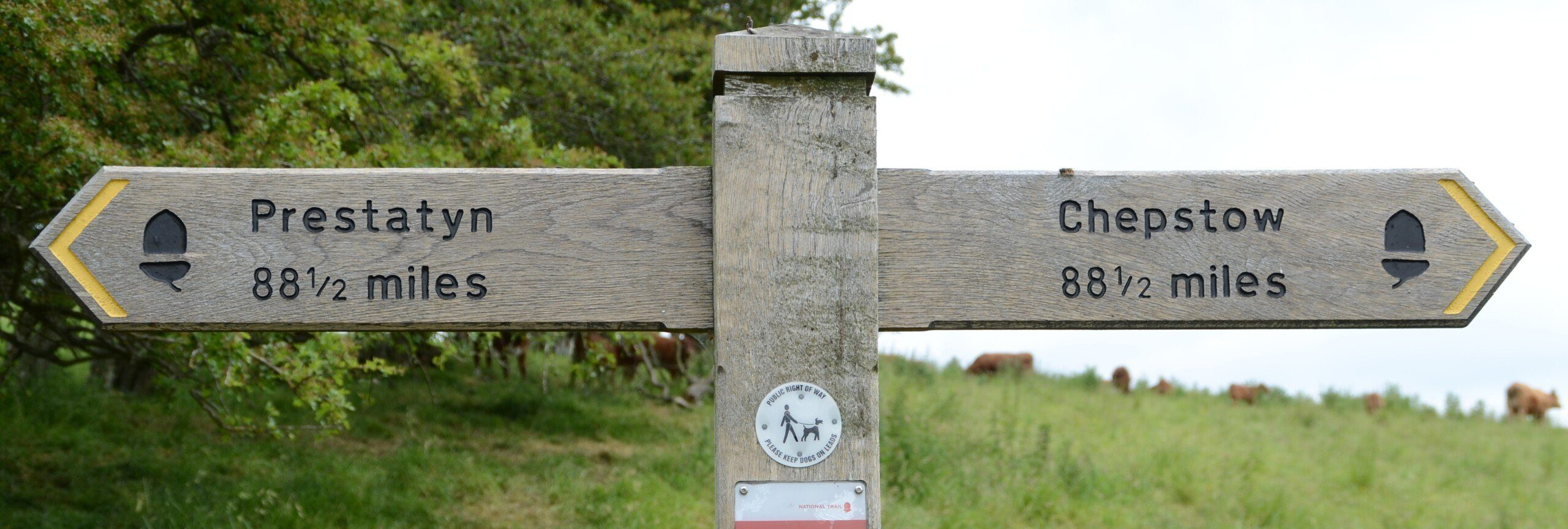 Offa's Way signpost, with Prestatyn and Chepstow both 88.5 miles away