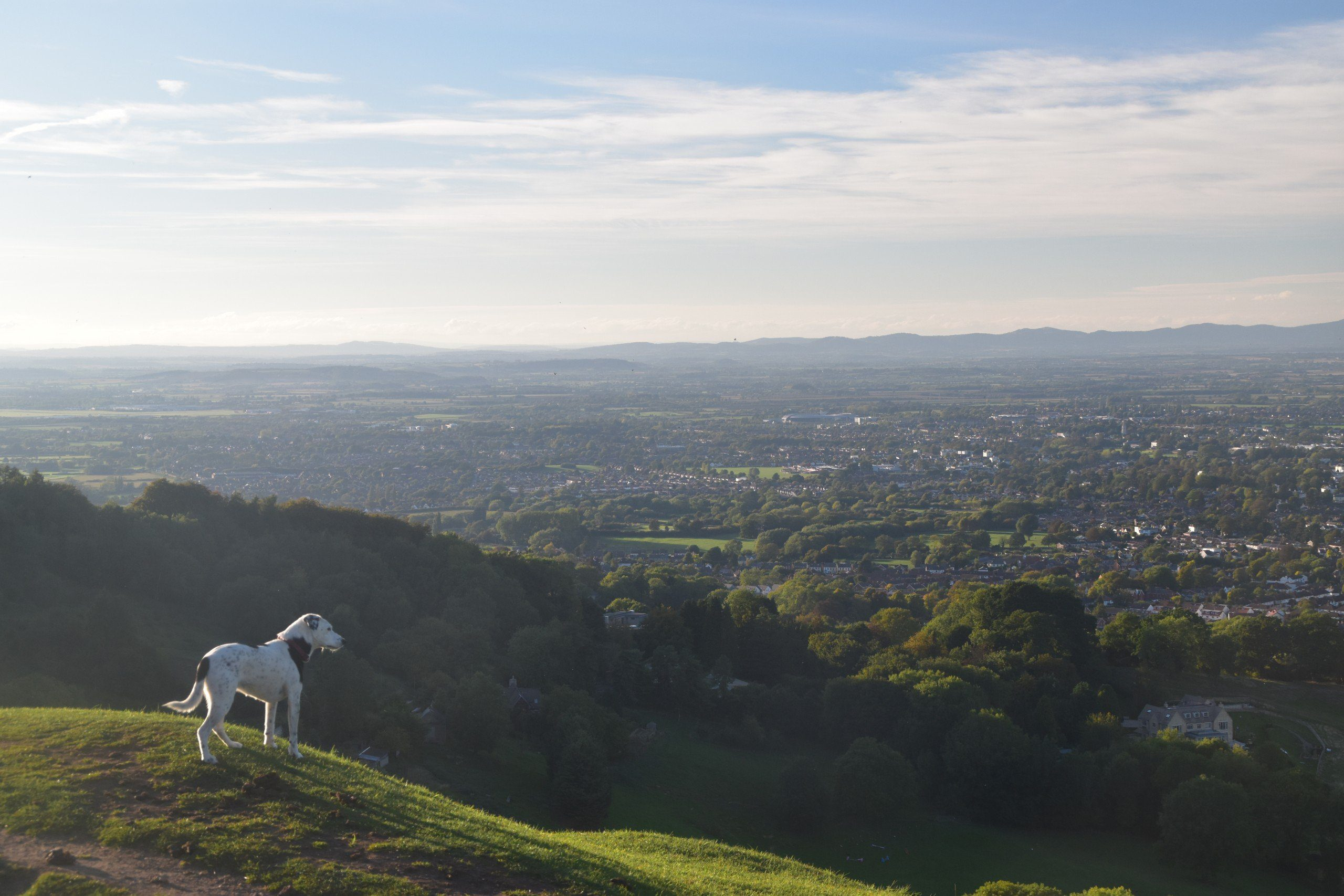Th Cotswold Way: View of Cheltenham from Hartley Hill