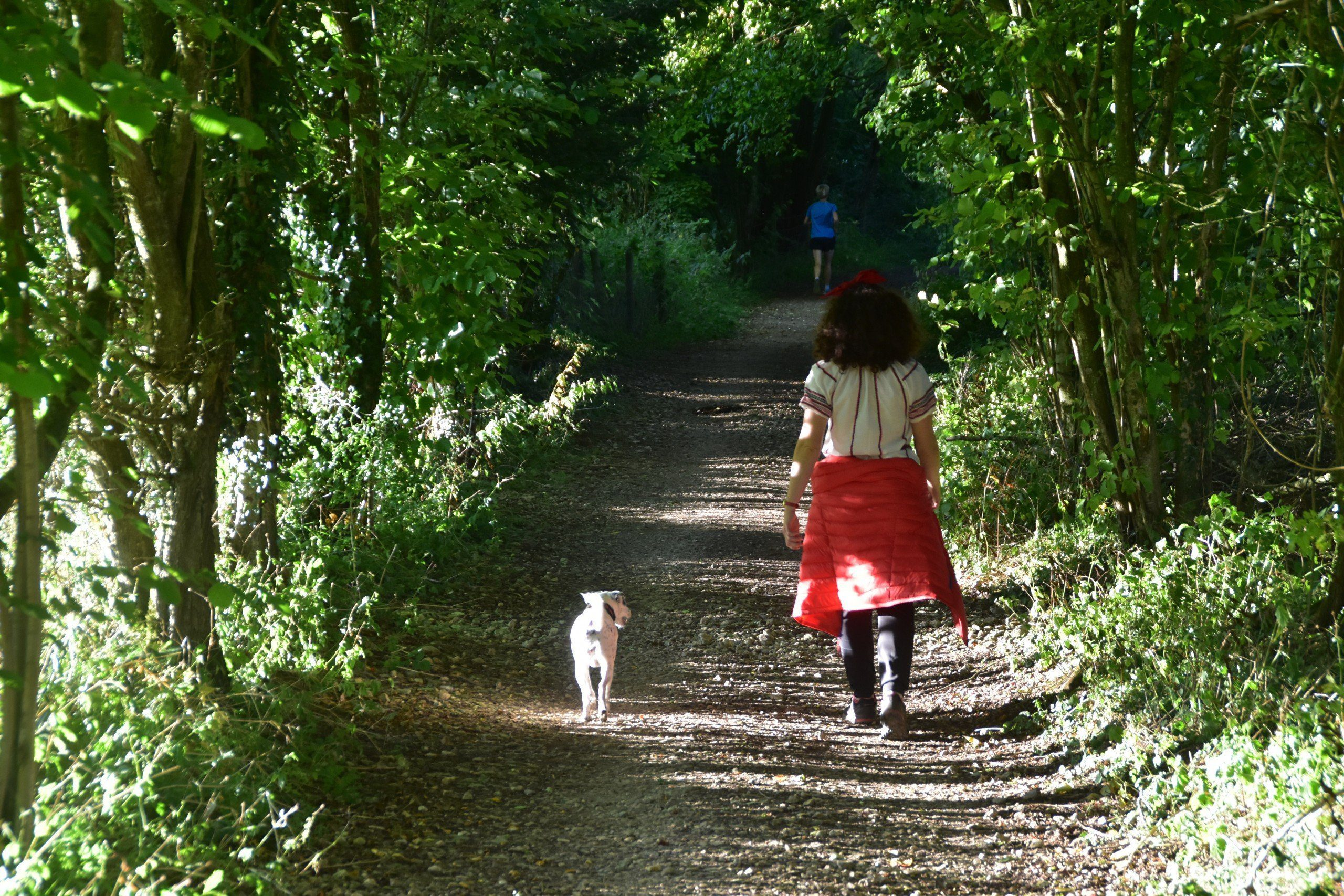 Daisy and Zoe walking through woods between Cleeve Hill and Leckhampton on the Cotswold Way