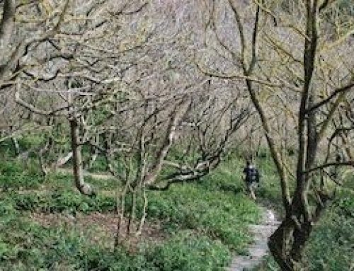 What's the most beautiful trail in Britain?