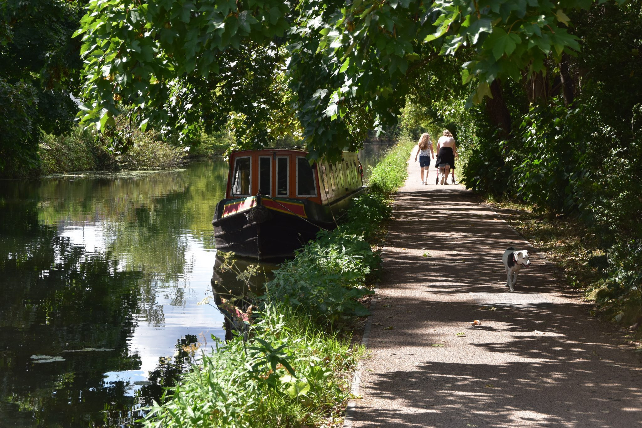 On the London LOOP a dog strolls by the Grand Union Canal with narrow boat on water