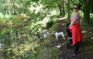 Thames Path dog looks into water as woman with pram smiles at camera