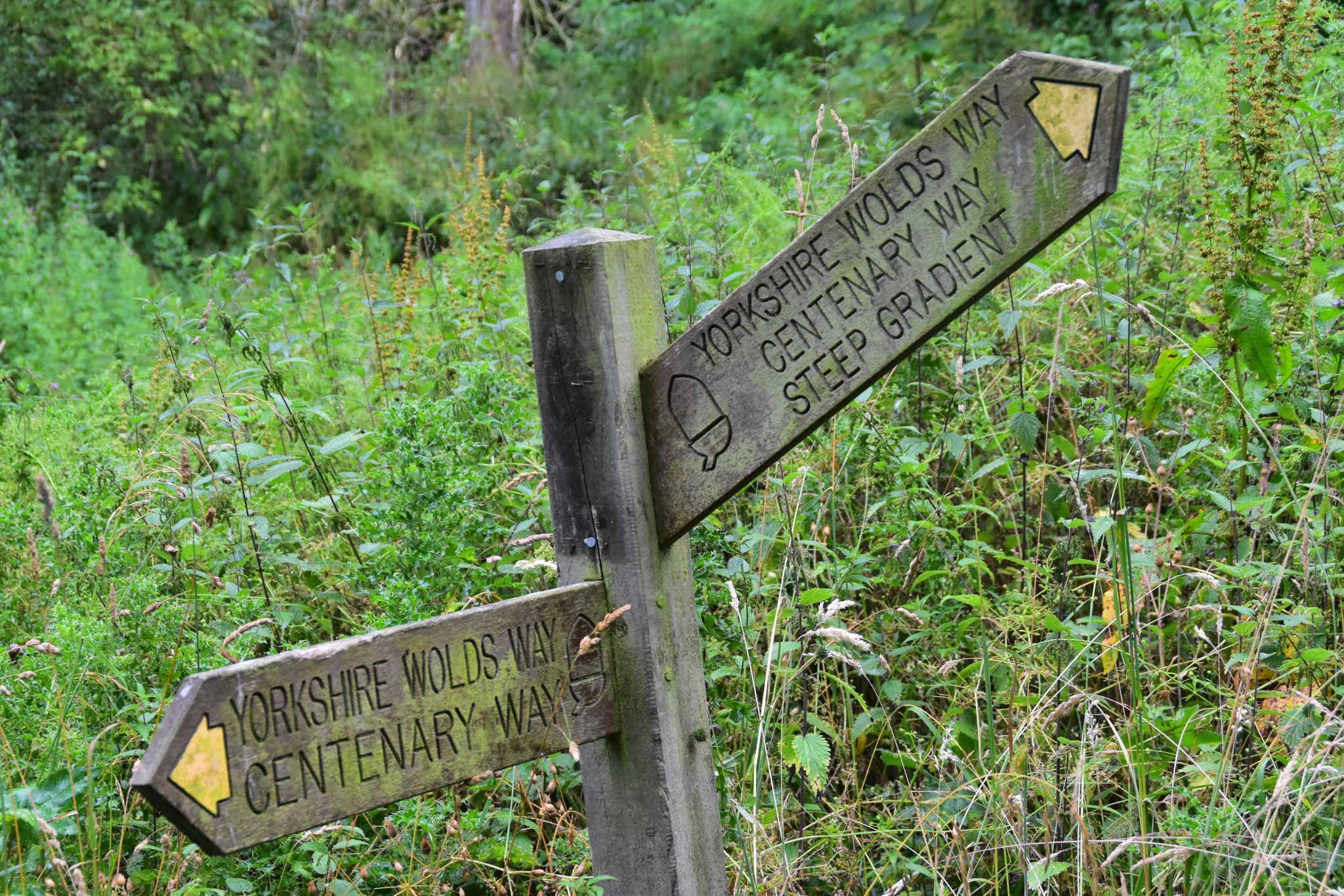 Wolds Way signpost pointing up steep hill